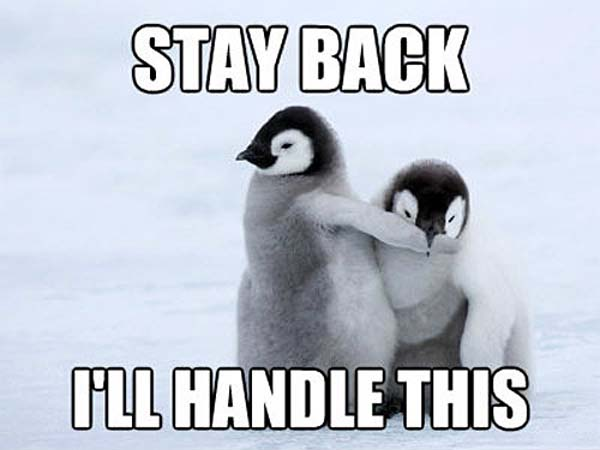 Penguin Courage